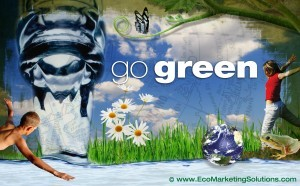Five Steps to Starting a Go Green Program at Work