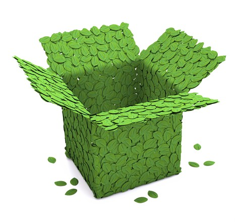 Green Packaging vs. Convenience Packaging: Which is More Important?