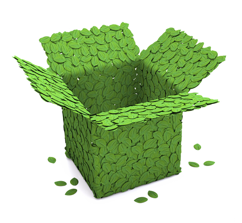 Green packaging vs. convenience packaging