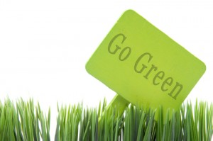 Some pundits are saying that green marketing no longer exists