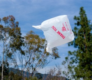 Plastic Bag Bans are becoming more popular