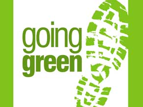 green corporate leadership