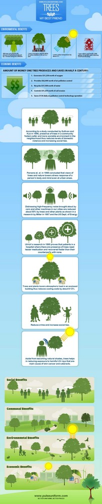 Great Infographic on The Importance of Trees