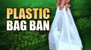 Austin Bag Ban - Much Ado About Nothing