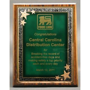 "Modern Nostalgia Series Plaque w/ Green Seeing Stars Series Plate (7""x9"")"