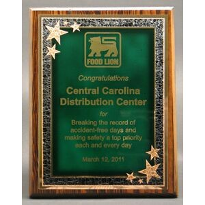 "Modern Nostalgia Series Plaque w/ Green Seeing Stars Series Plate (8""x10"")"